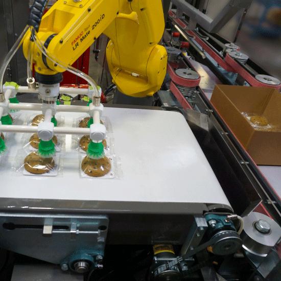 Salwasser ITL300 Robotic Top Load Case Packer