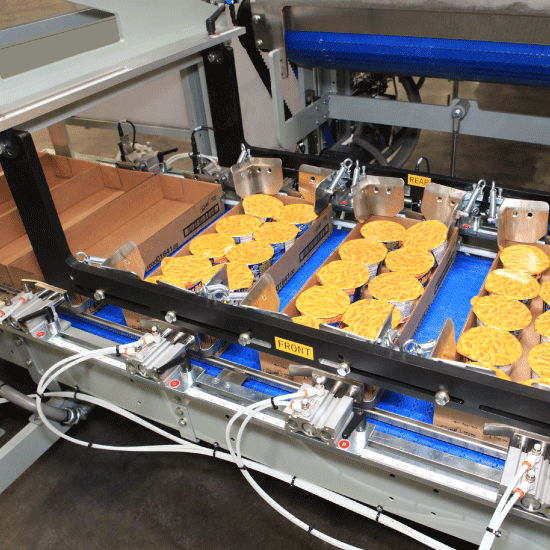 SWF TL Series Pick and Place Top Load Case_Tray Packer